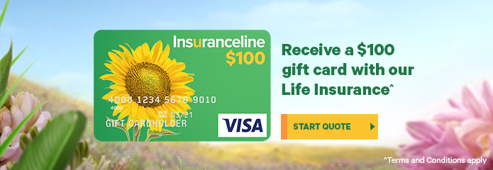 Life Insurance Online Life Cover Quotes Info Insuranceline